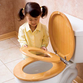 Family Potty Seat