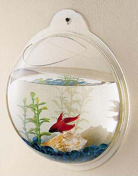 Fish Bubble Wall Mount Fish Tank