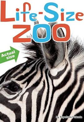 Life Size Zoo