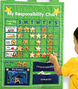 My Responsibility Chart Wall Hanging
