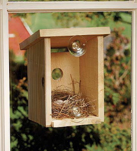 Window View Birdhouse