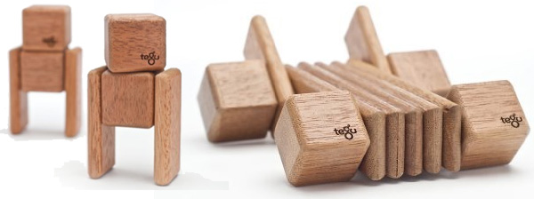 Tegu Magnetic Wooden Building Blocks Discovery Set